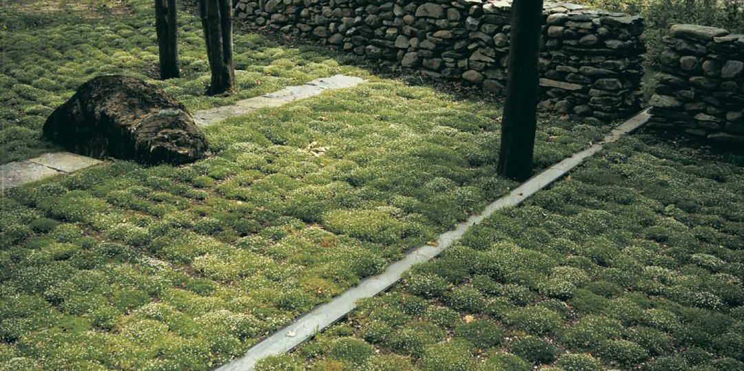 Entrance Garden For A Hilltop Residence In Richmond, Vermont, By Keith  Wagner Partnership Landscape Architects