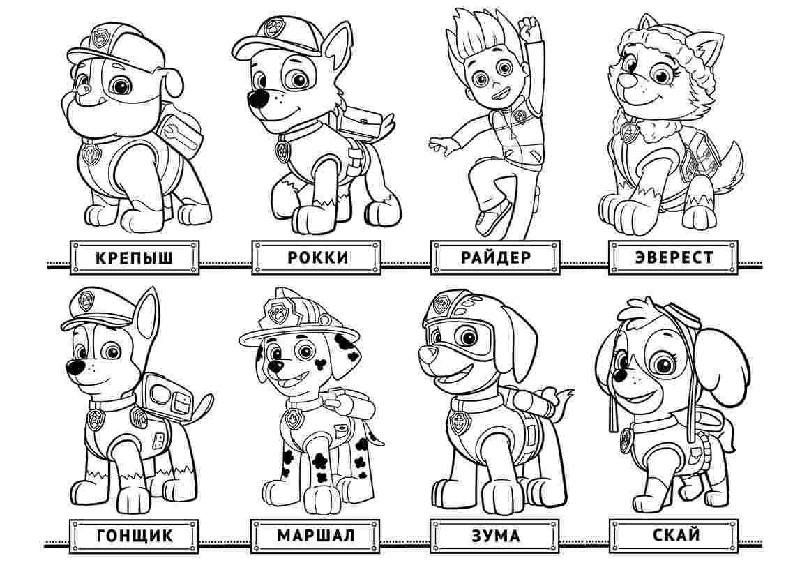 Coloring Pages For Kids Paw Patrol Paw Patrol Coloring Pages Paw Patrol Coloring Chase Paw Patrol