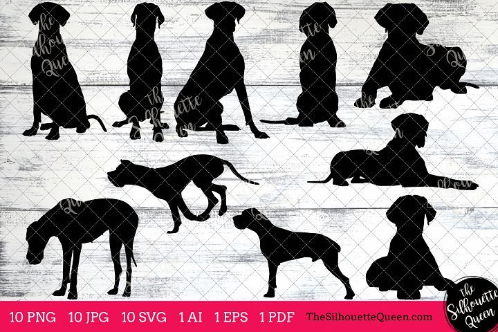 Great Dane Dog Silhouettes Clipart Clip Art Ai Eps Svgs Jpgs