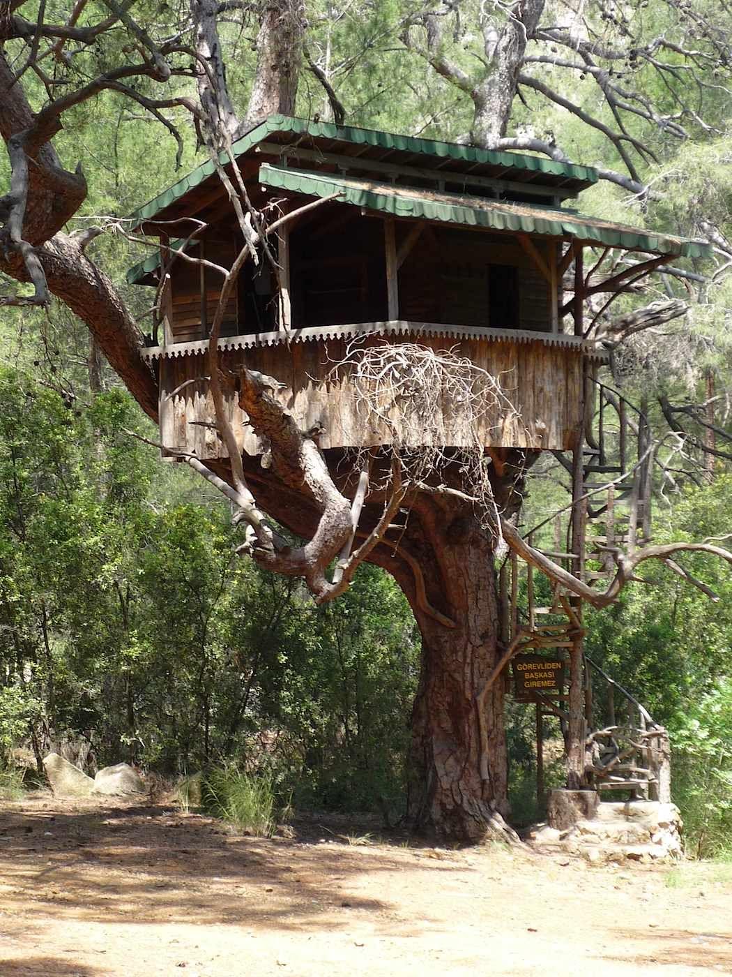 casa del árbol niños - Buscar con Google | CASAS DEL ÁRBOL ...