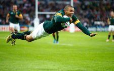 Heyneke Meyer Announces Springbok Rugby World Cup Squad Springbok Rugby Rugby World Cup World Cup
