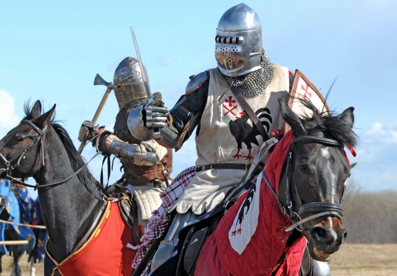 Mittelalter Pferde