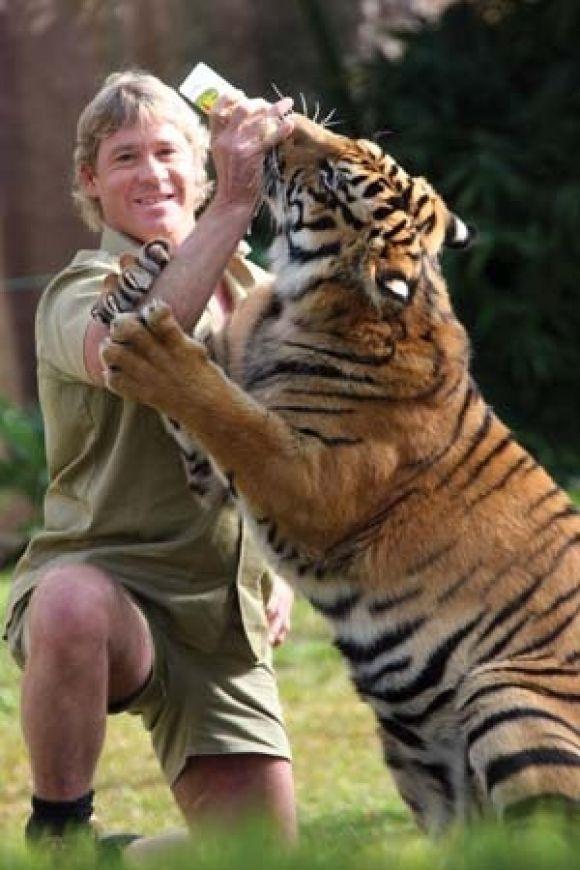 Australia Zoo Tour with Steve Irwin   YouTube