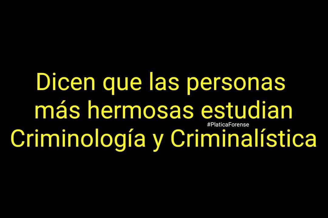 Pin De Maryel Torres En Ics Psicologia Forense Criminologia Criminalistica Forense