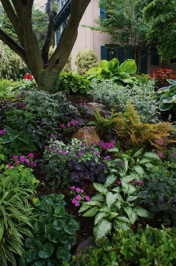 Sumptuous Shady Corner 2 Shade Landscaping Shade Garden Design Shade Garden Plants