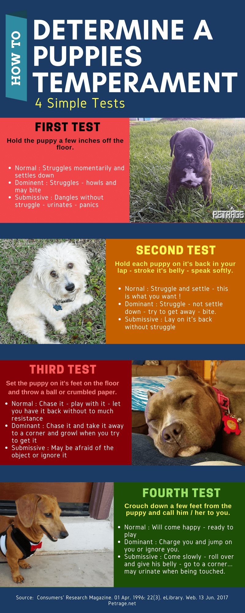 4 Simple Tests To Determine A Puppy S Temperament In 2020 Dog Care Tips Dog Training Dog Training Obedience