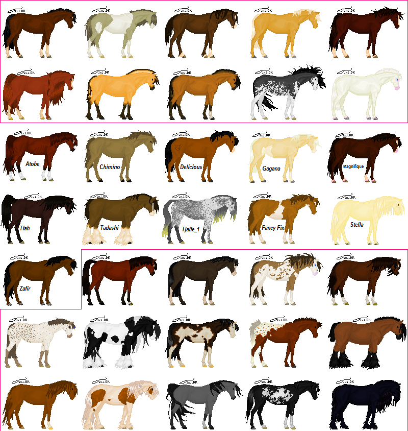 Horses Colors Pixel Art By Ninjako D3cnfsa Png 800 844 Horse Coloring Funny Horse Pictures Horse Breeds