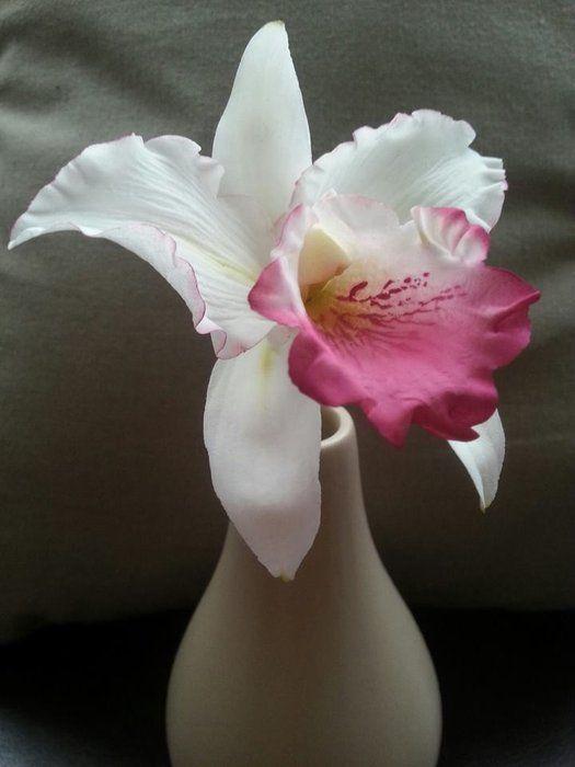 Sugar Cattleya Orchid Sugar Flowers Tutorial Cake Decorating Flowers Fondant Flowers