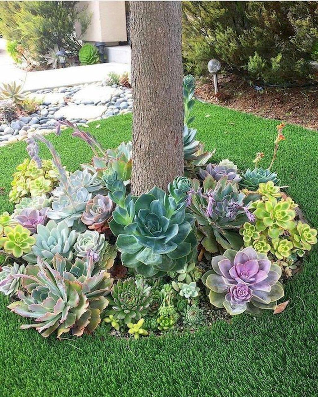 50 Green Backyard And Front Yard Landscaping Ideas Succulent Landscaping Succulent Landscape Design Yard Landscaping
