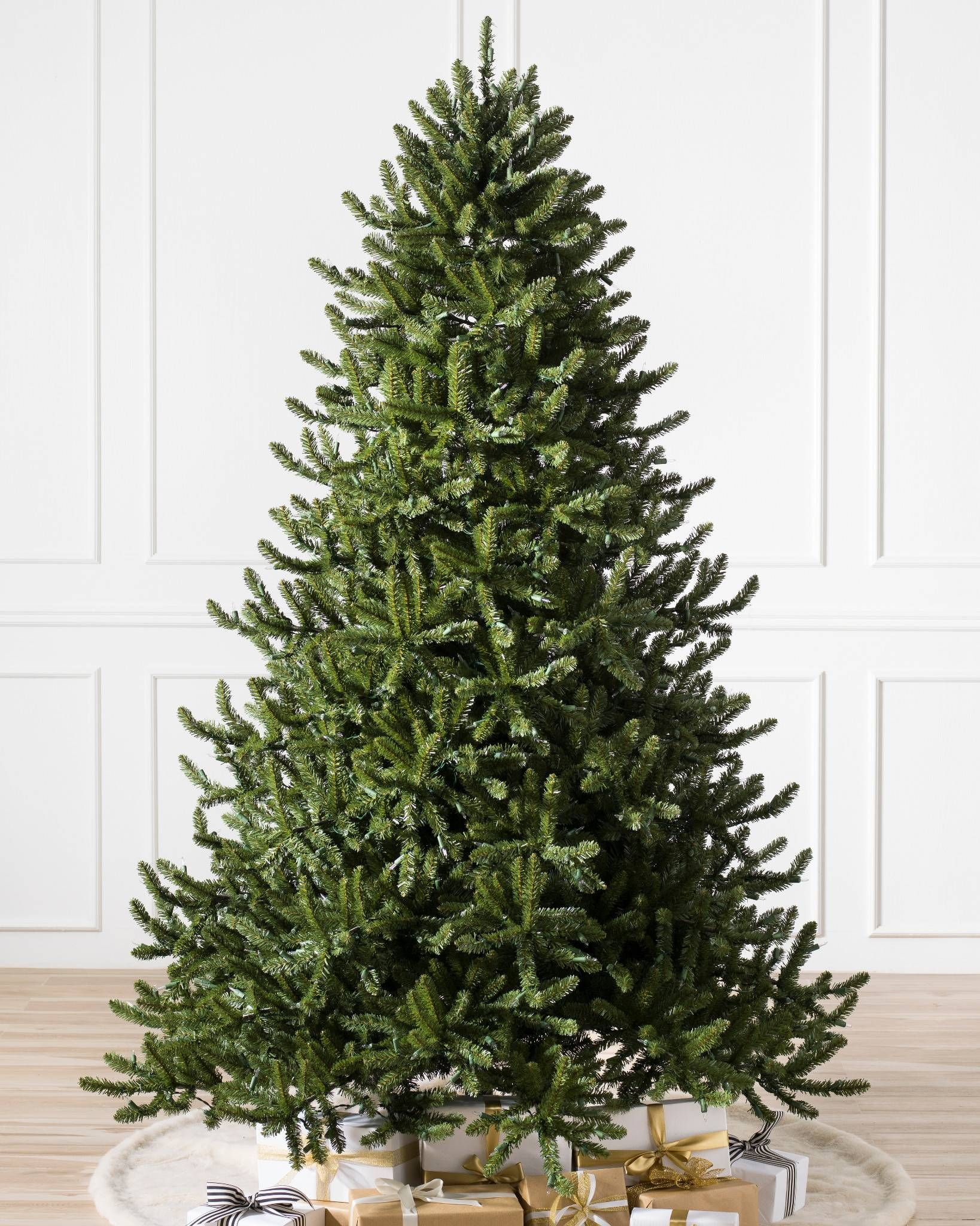 Adirondack Spruce Tree With Images Types Of Christmas Trees