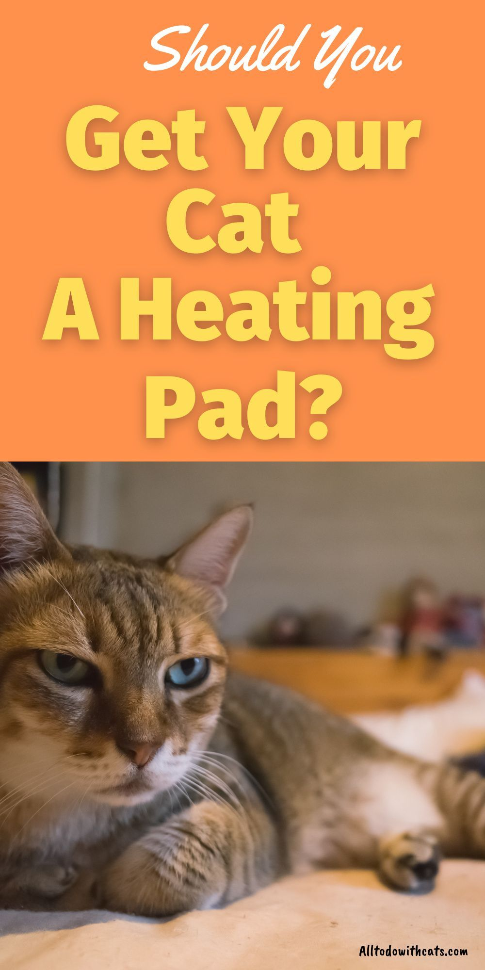 What Are The Best Heating Pads For Cats And Are They Safe Best Heating Pad Cat Bed Pet Heating Pad