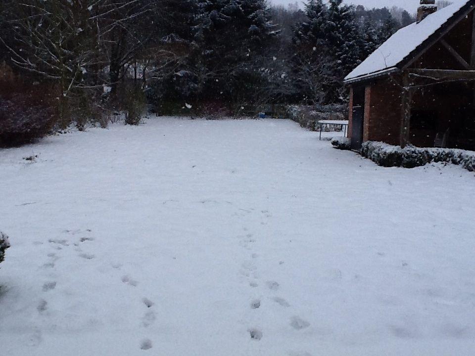 Snow has fallen ..