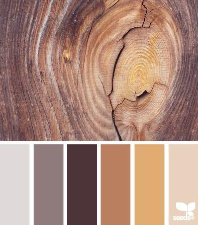 Wood Hues Color Palette By Design Seeds