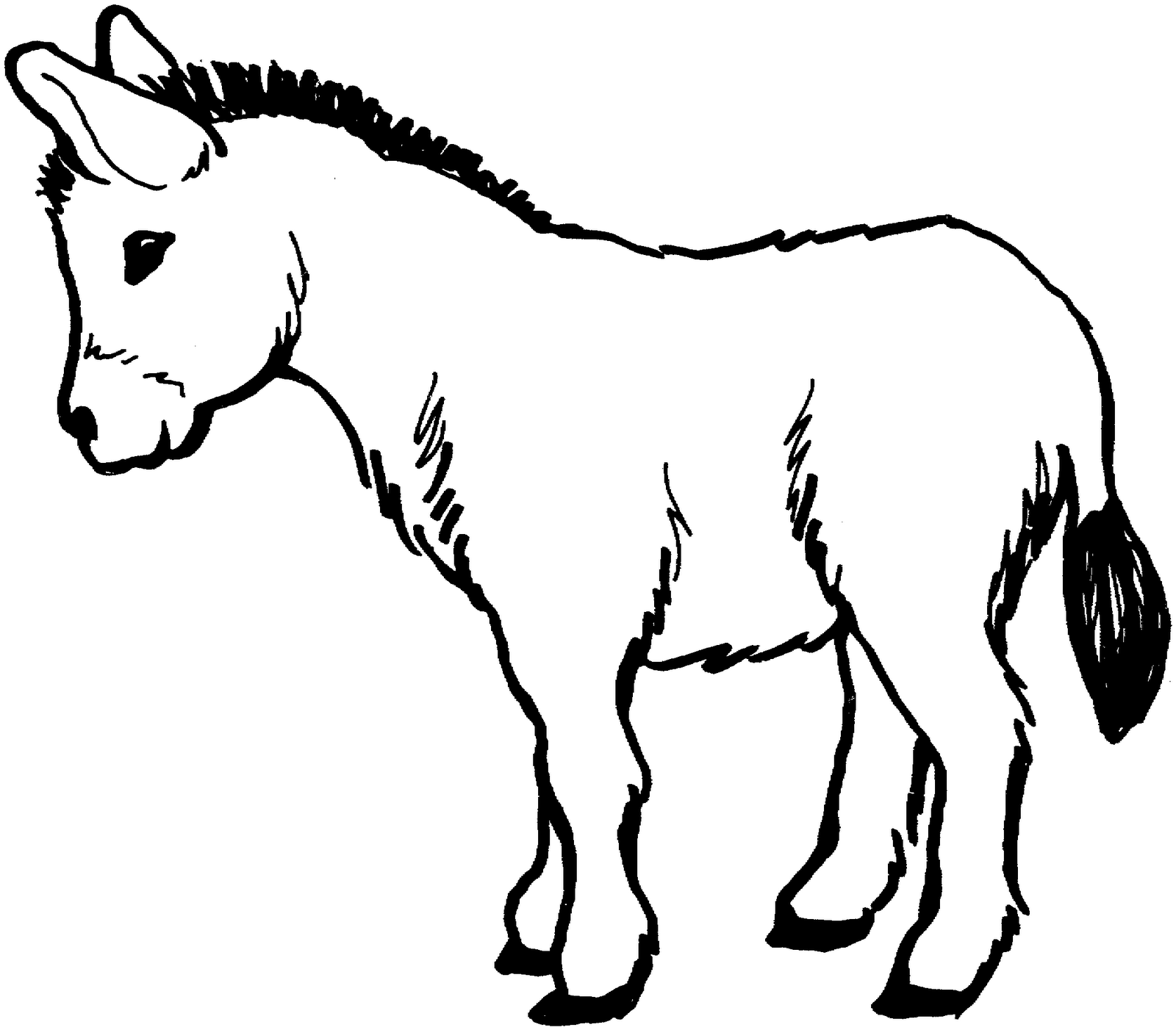 coloring pages of donkeys | Jumento: Burro, bestia de carga. Por ...