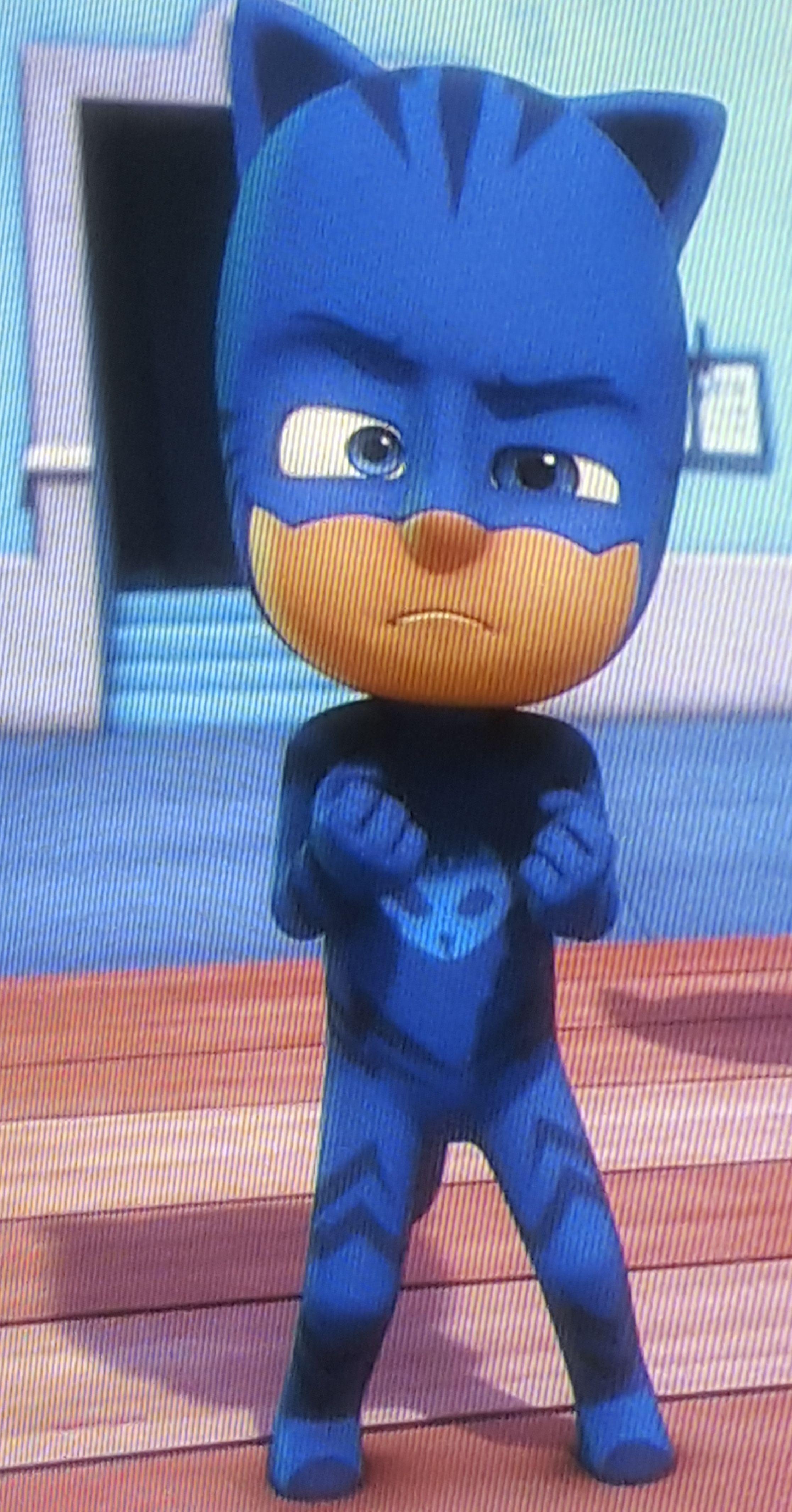 Disney Jr Pj Masks Catboy Sew Halloween Costume Catboy