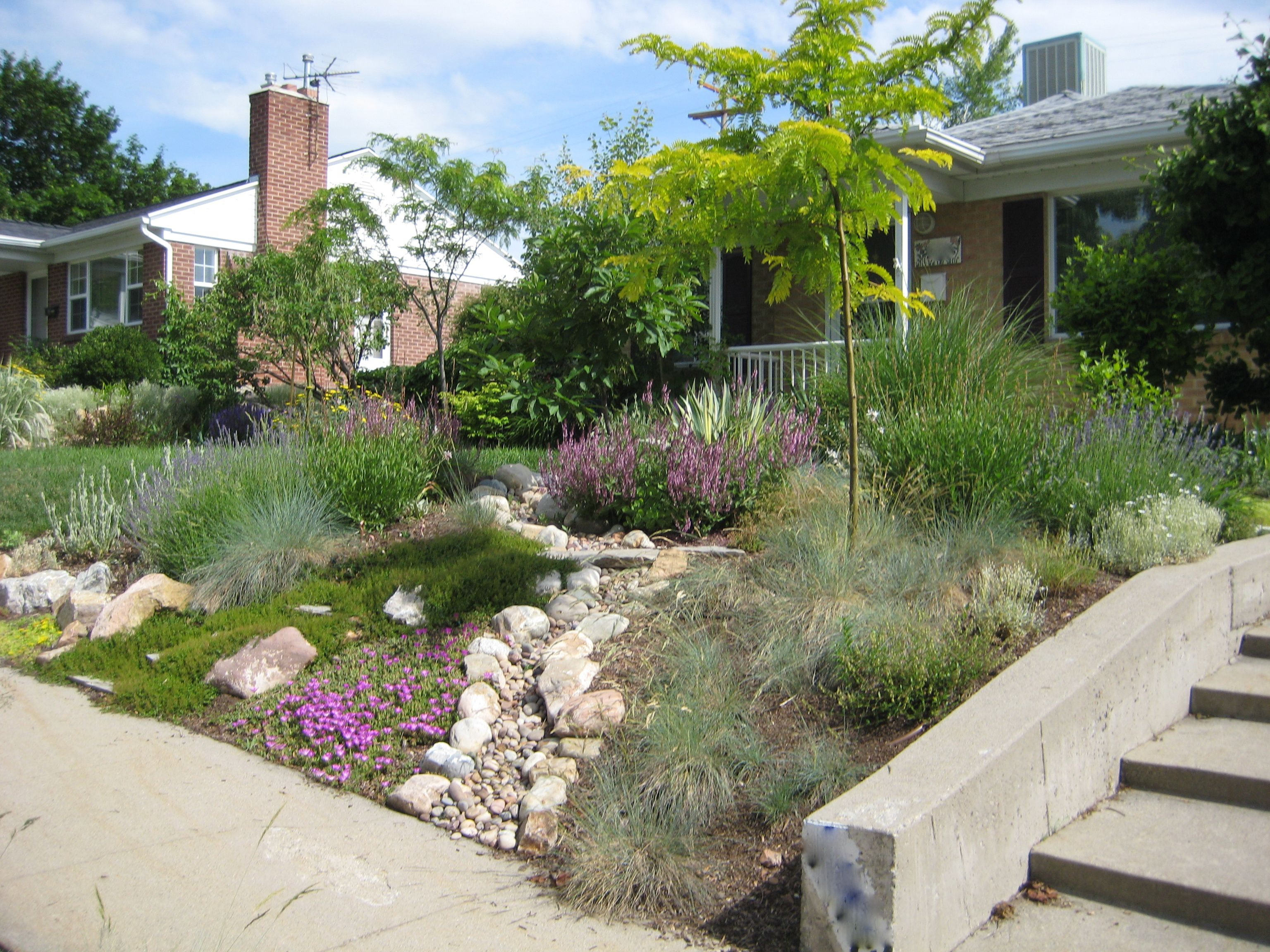 Considering drought tolerant landscaping for cheap and beautiful garden inspiring front yard landscape with drought tolerant landscaping and low retaining