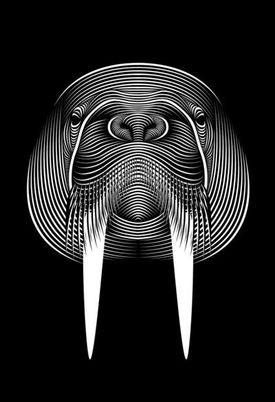 I am the walrus Art Print by Patrick Seymour | Art ...