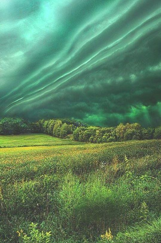 Abstract Photography For Beginners 9 Tips For Capturing: Take My Hand Print By Phil Koch