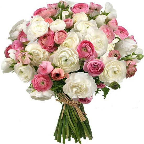 Brassee De Fleurs Aquarelle Com Merveilleuses Renoncules