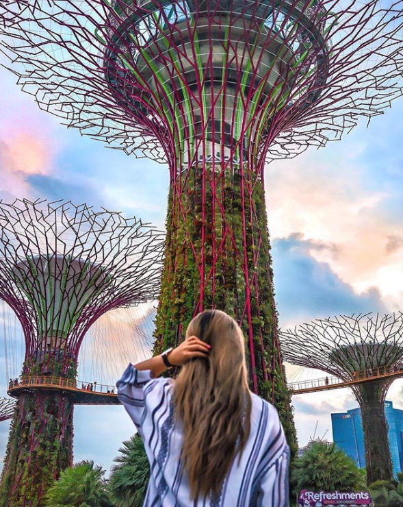 6841d74e3dad84d82312d7ca9e8b71a9 - How Long To See Gardens By The Bay