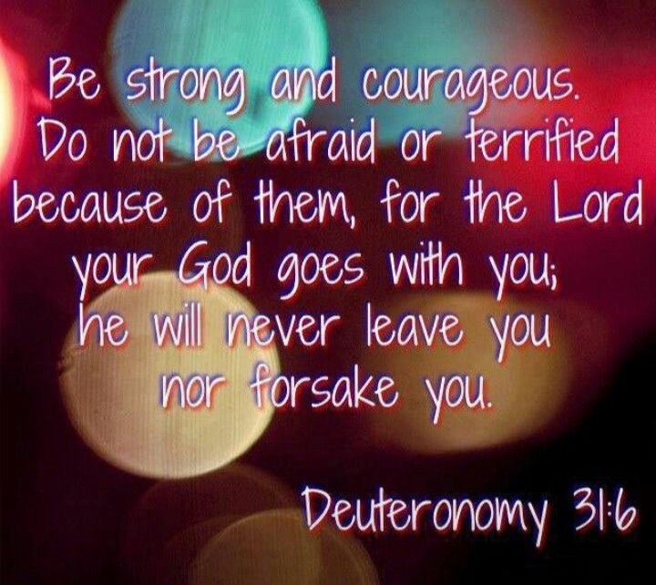 God Jesus, Bible Studies, Bible Quotes, Bible Verses, Jesus Loves, Things I  Love, Deuteronomy 31, Philippians 4, Sayings