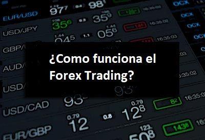 Guia para principiantes en forex trading
