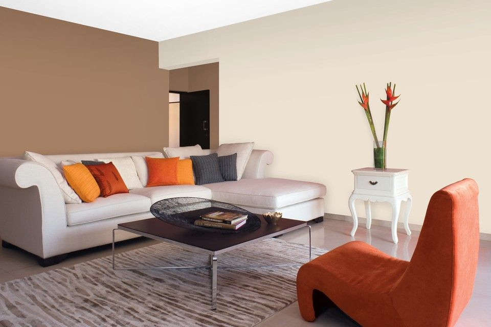 Asian Paints Living Room Combination