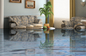 We Provide 24 Hour Water Damage Flood Damage And Fire Damage