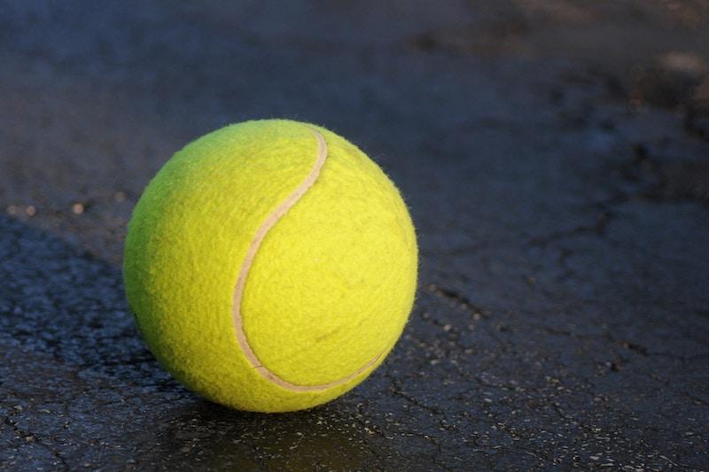 Tennis Ball Frenzy In 2020 Tennis Ball Tennis Tennis Rules