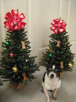 Dog Themed Christmas Trees Christmas Tree Themes Christmas Tree Festival Christmas Tree Dog