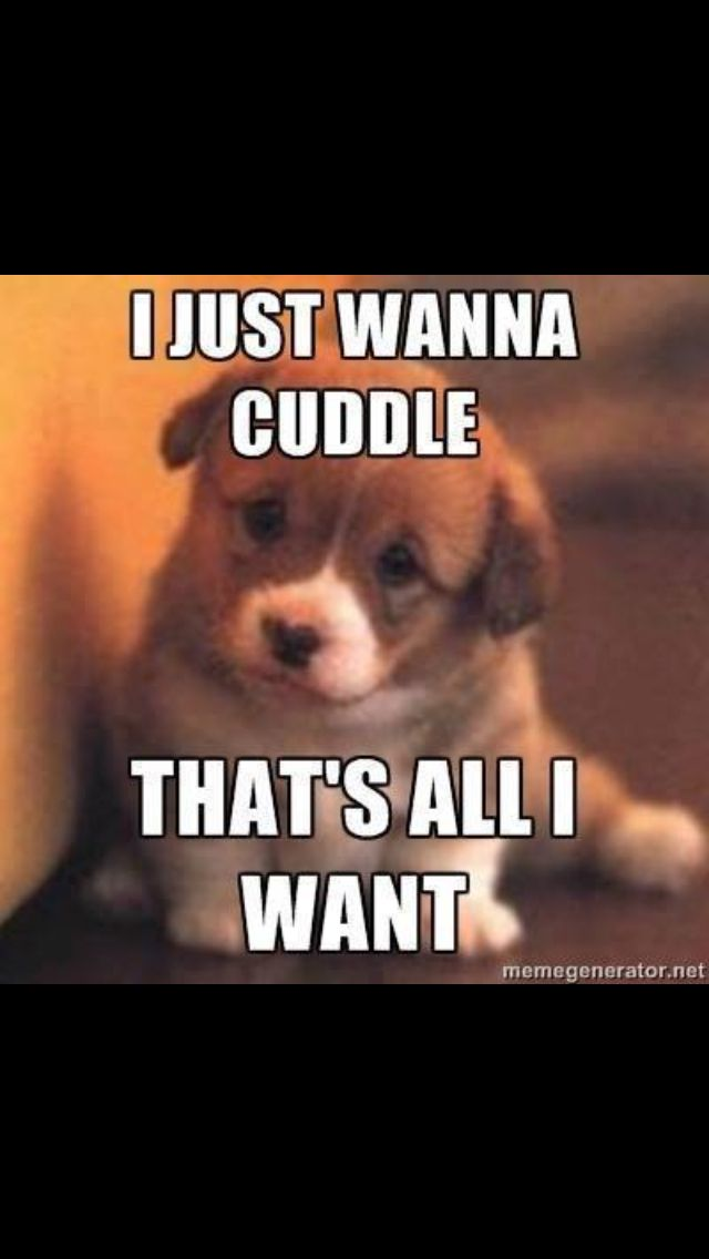 I Want To Cuddle With You Quotes: Just Wanna Cuddle Quotes. QuotesGram