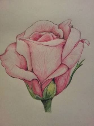 Resultado De Imagen Para Rosa Tumblr Dibujo Flores En 2019