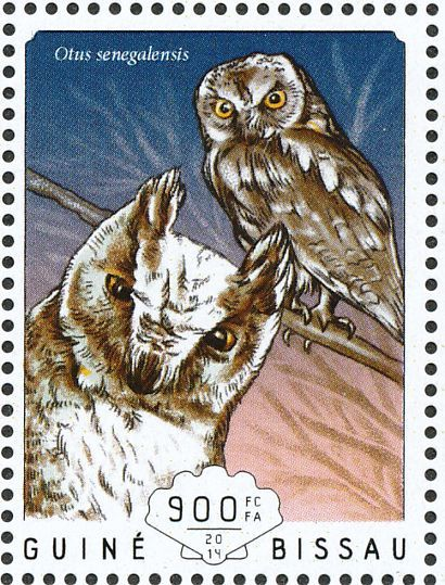 african scops owl stamps mainly images gallery format owl