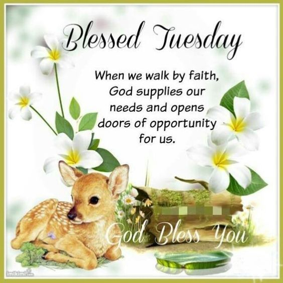Blessed Tuesday Inspirational Quote Inspiration Tuesday Quotes