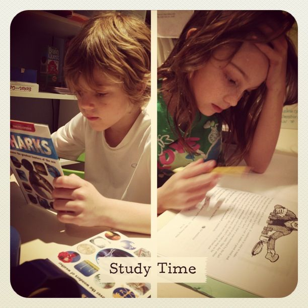 Individual Study Time