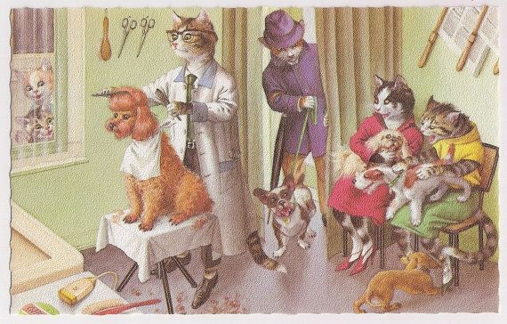 Alfred Mainzer Cats At The Dog Barber Shop Artist Eugen Hartung