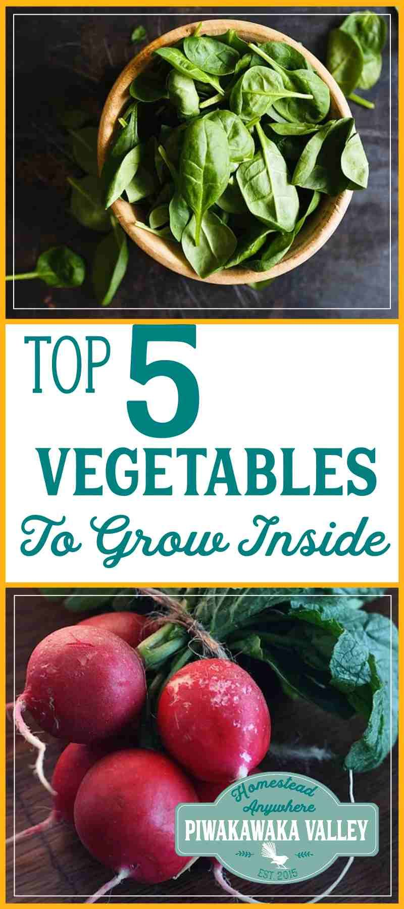 Grow Vegetables Inside Top 5 Vegetables To Grow In Pots 400 x 300
