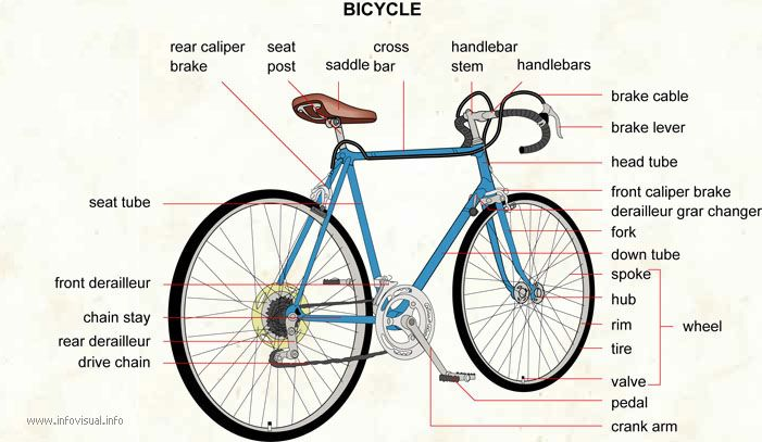 Get to know your bike. Most of bike elements shown here.