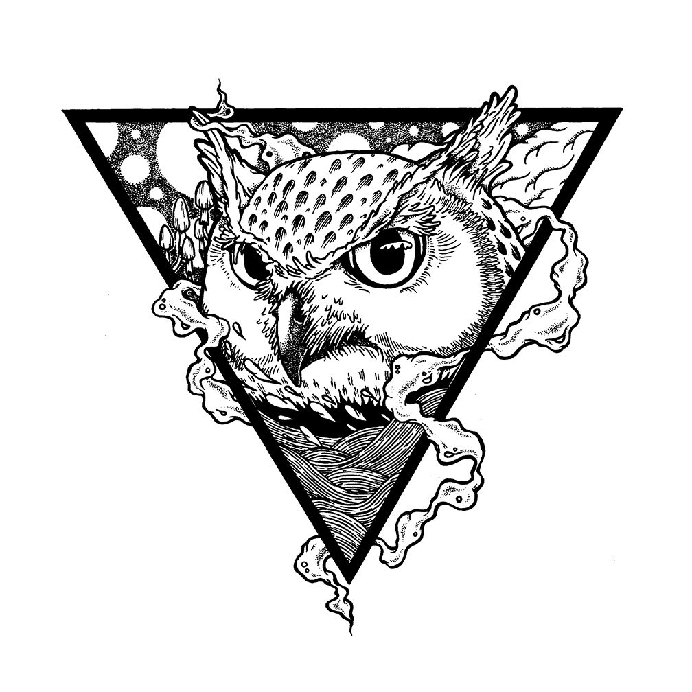 Flying Owl Drawing Published October 29 2013 At Owls