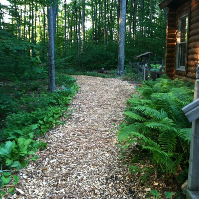 Wood Chip Path Through The Woods Could Do This After We Mulch All