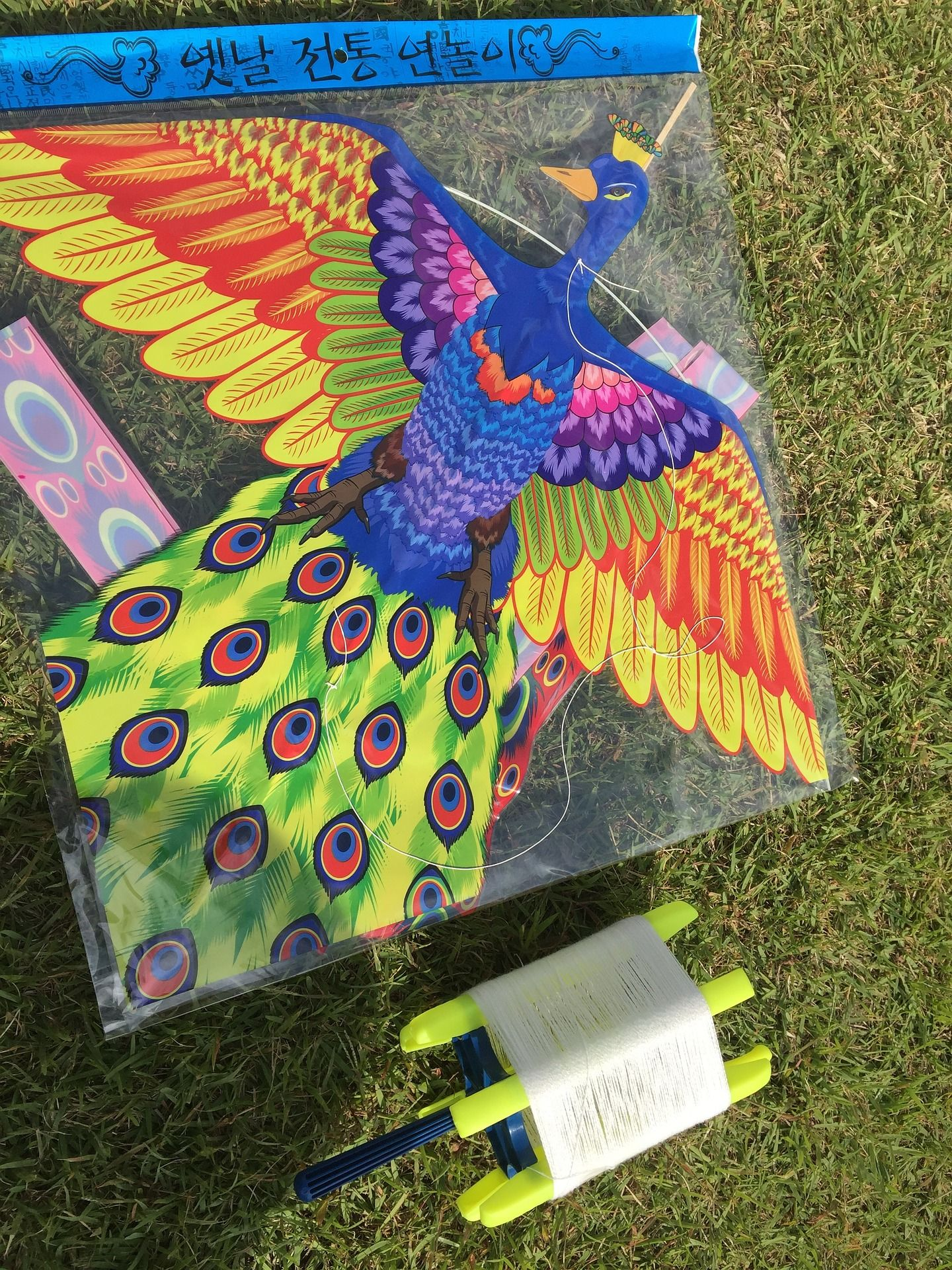 Kids Go Fly A Kite