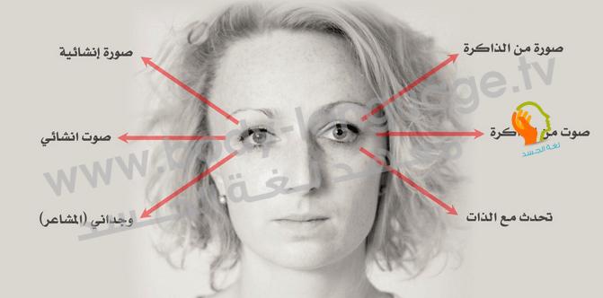 قراءة لغة العيون بالصور في علم لغة الجسد Body Language Face Reading Language