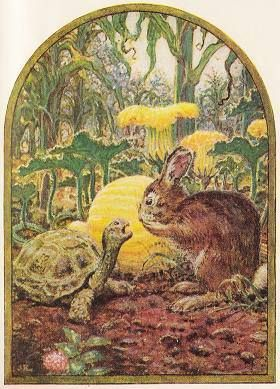 bunny and the turtle illustration