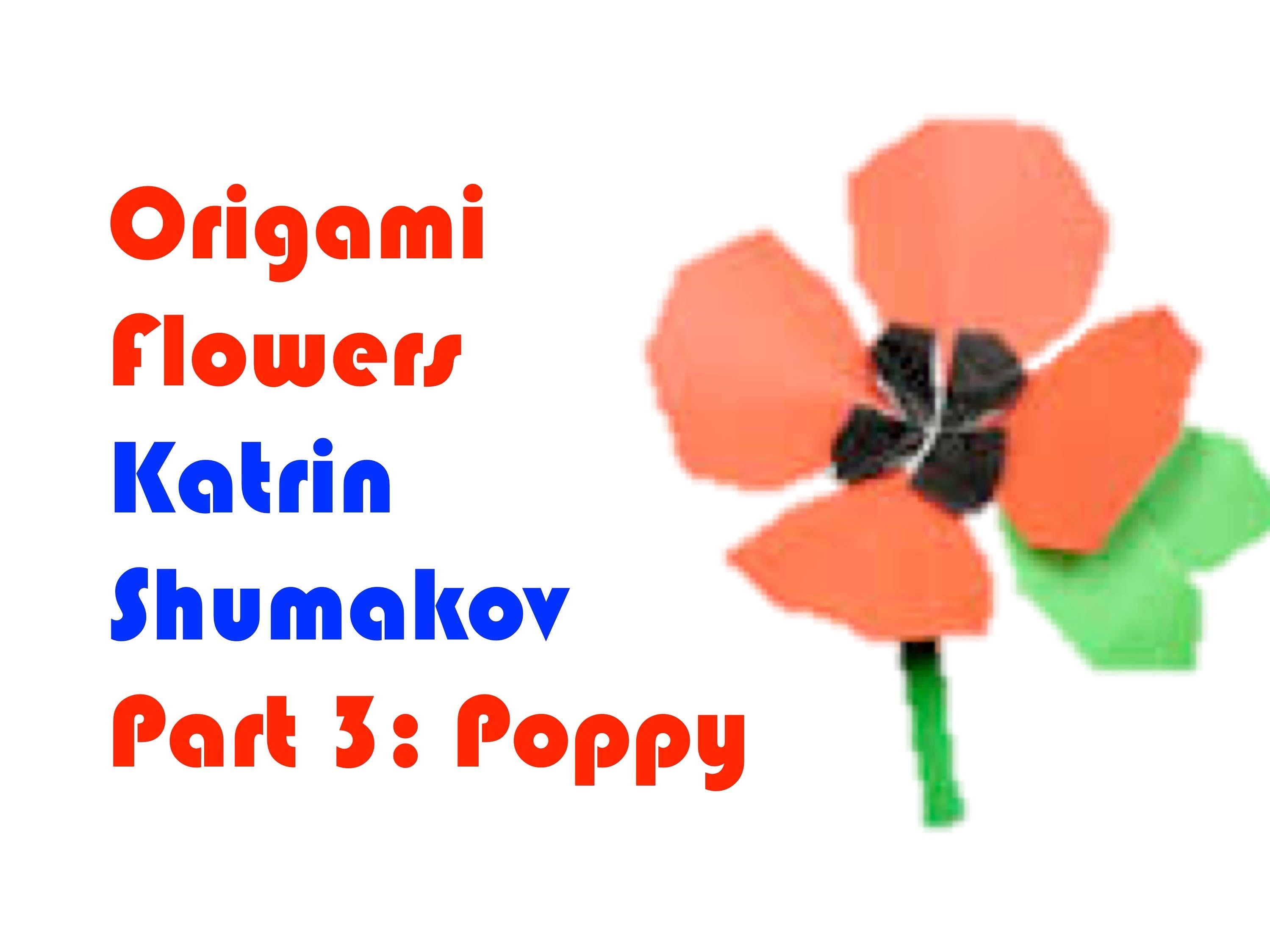 A Video Tutorial For Making Origami Flowers This One For Making