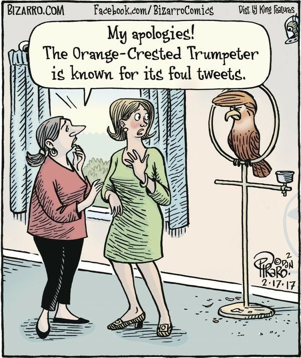 Image result for Trump cartoon with funny text