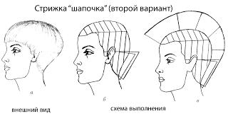 Схема стрижки шапочки