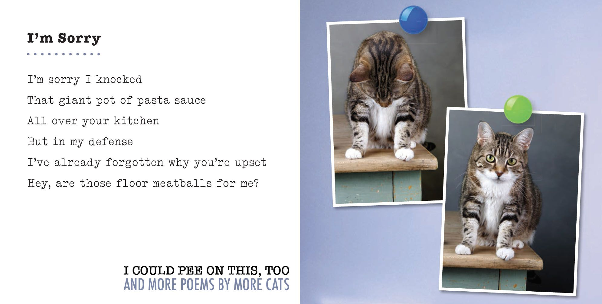 """Cats and Food from """"I Could Pee on This, Too: And More Poems by More Cats"""""""