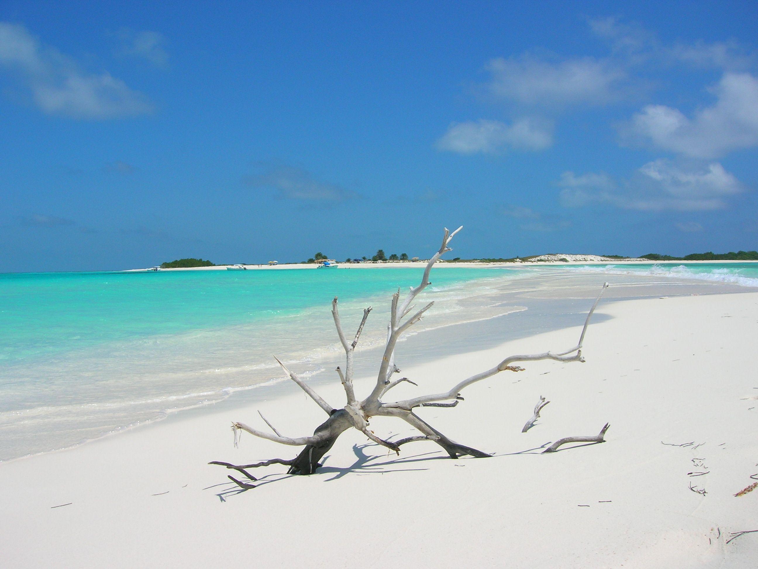 Los Roques. Nunca podre olvidar estas arenas blancas!!