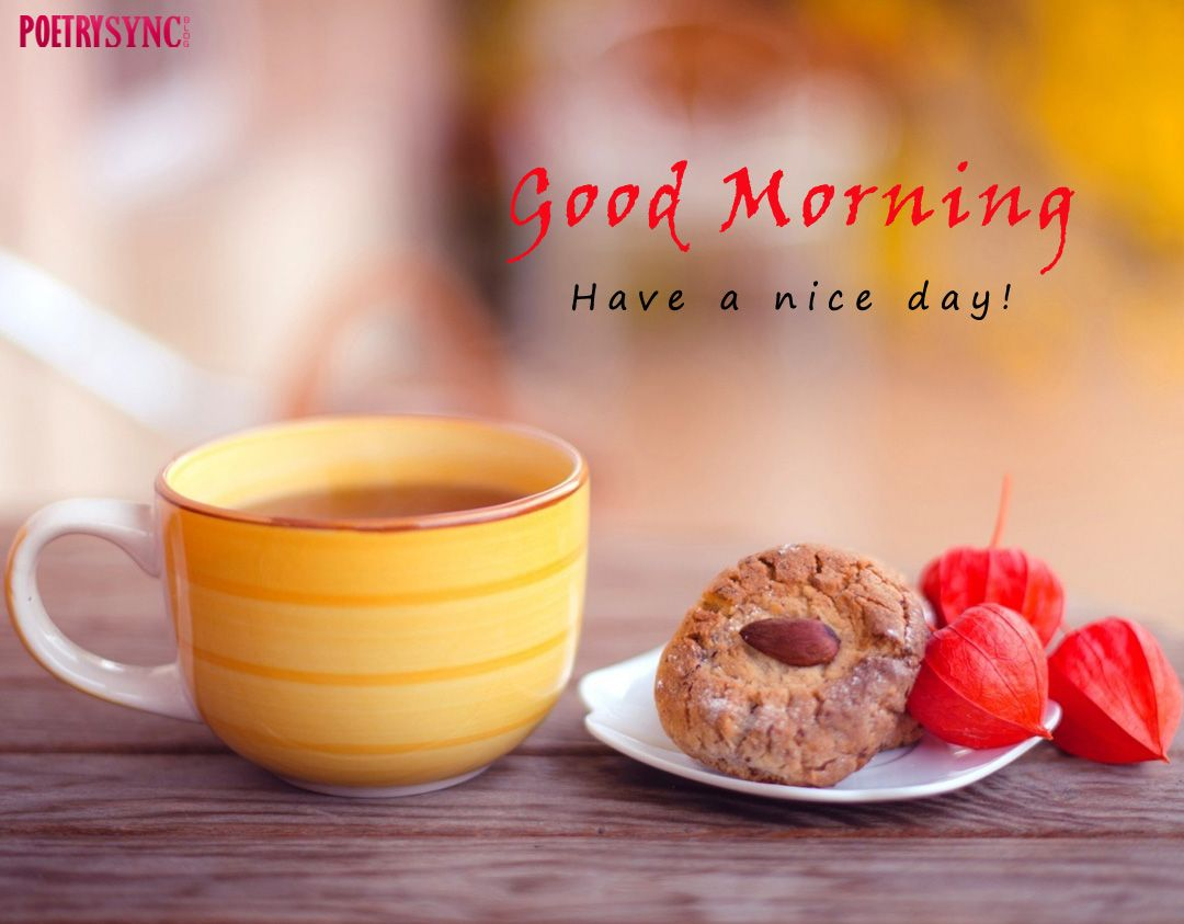 Good Morning Tea Cup Images Free Download For Desktop Poetry