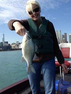 White Bass Are Running Wild In Lake Michigan Chicago Sun Times Lake Michigan Chicago Lake Michigan Lake
